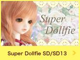 sperdolfie☆SD/SD13